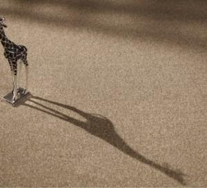Tradición – Carpete em Manta – Beaulieu